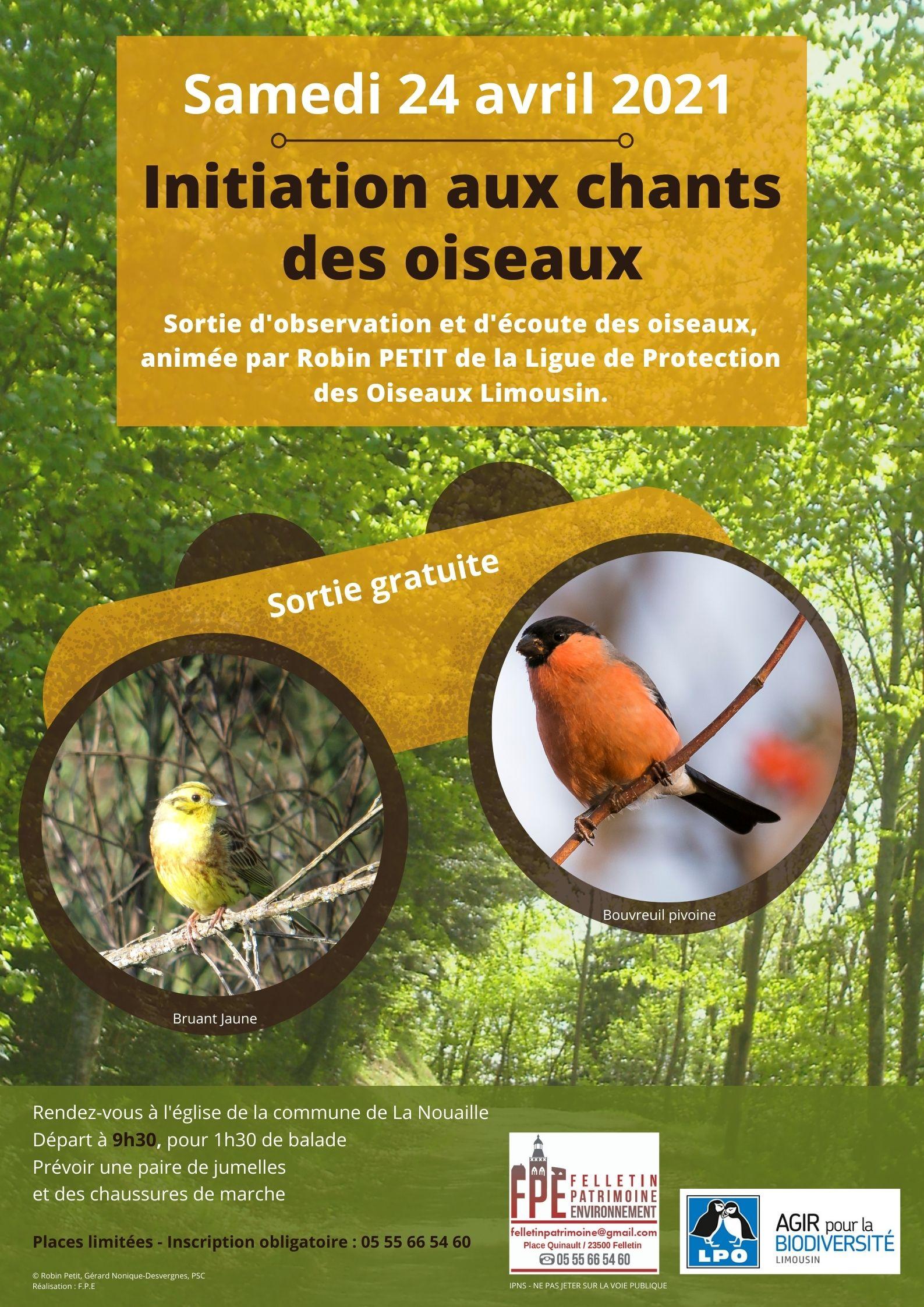 Observation et écoute des oiseaux